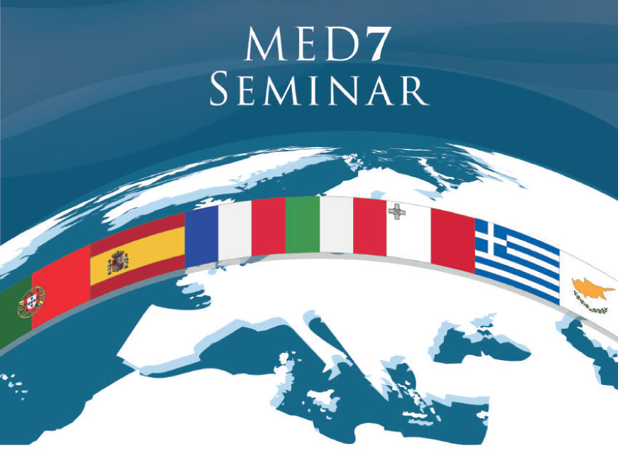 CHALLENGES AHEAD IN THE EURO-MEDITERRANEAN REGION